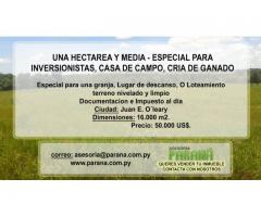 INMUEBLE DE HECTAREA Y MEDIA EN JUAN E. O´LEARY.