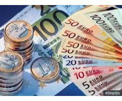 El apoyo financiero para la implementación de sus proyectos.