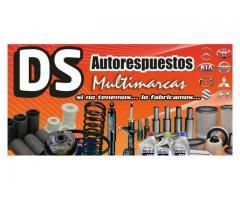 'DS' Autorepuestos Multimarcas